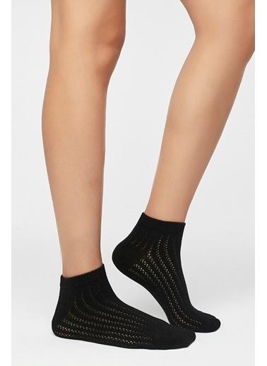 Penti Siyah - Çok Renkli Colosio 2Li Patik Çorap Siyah